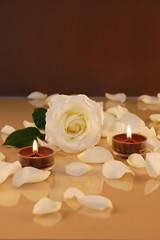 Rose mit Teelichtern