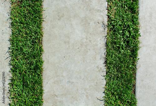 stonepath with grass