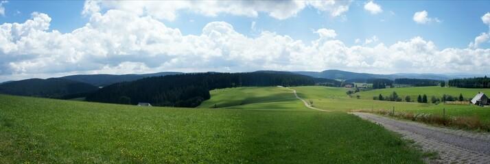Panoramablick über Wiesen, Wälder und Berge