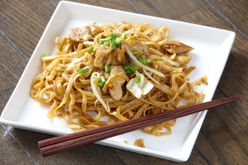 stir fried rice noodles with pork and vegetables