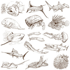 Underwater 2 - hand drawings