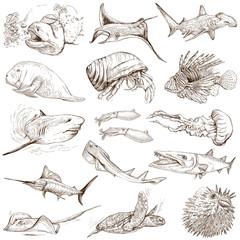 Underwater 2 - hand drawings