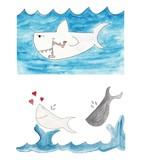 set squalo e balena