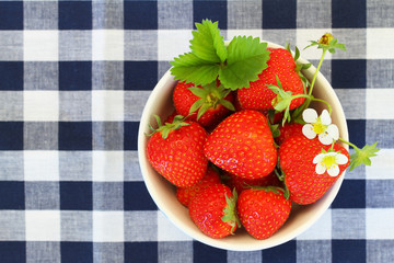 Bowl of fresh strawberries on checkered cloth with copy space