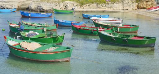 traditional fishing boats anchored in the harbor of Polignano