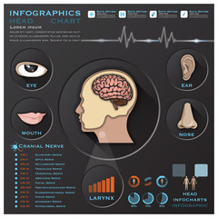 Head And Otolaryngology System Medical Infographic Infochart