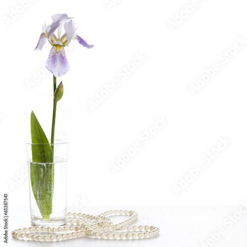 Staande foto Iris Iris in a glass