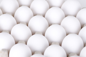 bunch of eggs