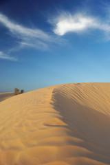 Dunes de sable clair du désert tunisien