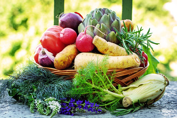 kleiner Gemüsekorb im Garten