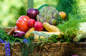 Gemüsesorten in einer Holzkiste