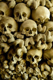 Human skulls and bones in the wall of Skull Chapel in Czermna