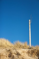 Wooden pole and dune