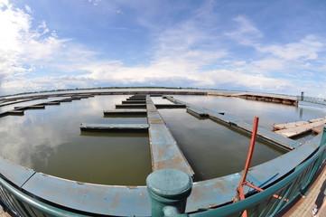 Empty Marina