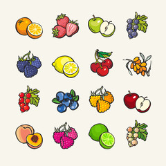 Set of vector cartoon icons - fruits and berries