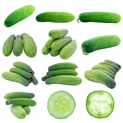 collection long cucumber isolated on white