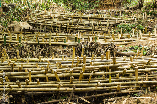 In de dag Bamboo Dam to slow down the flow of water,to protect forests and preser