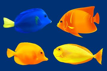 Set of tropical fish. Vector illustration
