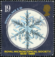 stamp shows Snowflake under Microscope