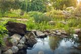 Gartenteich mit frischer Quelle