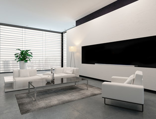 Modern white, grey and black living room interior