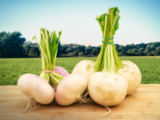Turnip on Table against Farmland