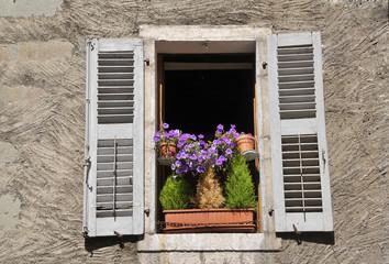 Vecchia finestra con fiori