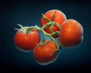 Tomato with CO2 Bubbles,underwater