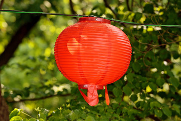 Round red lantern on blurry floral green background