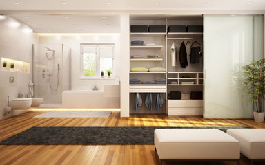 Wardrobe and bathroom in the living room