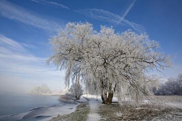 Deutschland, Bayern, Murnau, See im Winter