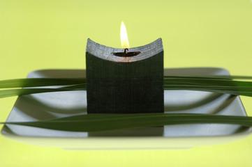 Kerzen und Blütenblättern auf Schale