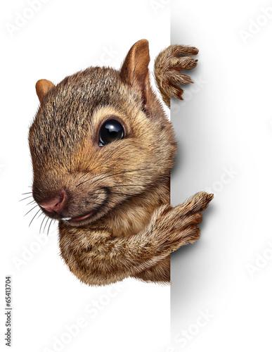 Leinwanddruck Bild Squirrel Sign