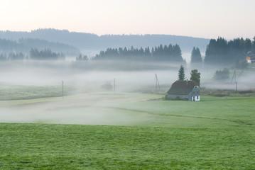Deutschland, Schwarzwald, Breitnau, Morgennebel