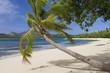 Leinwanddruck Bild - Tropical Paradise - Fiji - South Pacific Ocean