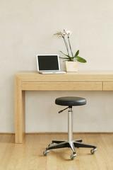 Orchideen, Pflanzen und Laptop auf einem Tisch