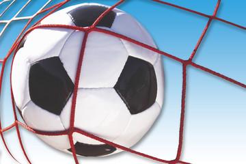 Fußball im Netz, Tor