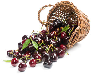 Cherries with leaves in a basket is scattered