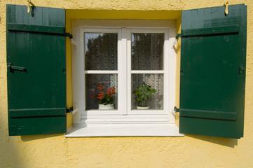 Deutschland, Bayern, München, Schwabing, Zimmerpflanzen in Fenster
