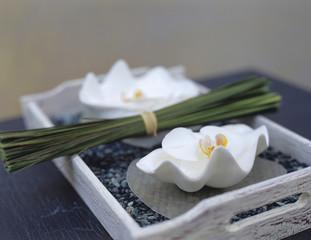 Weiße Orchideen und Gras in Schale