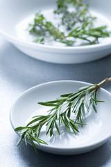 Rosmarin auf weißem Teller