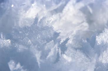 Schneeflocken, close-up