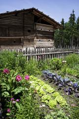 Österreich, Bauernhaus mit Gemüsegarten