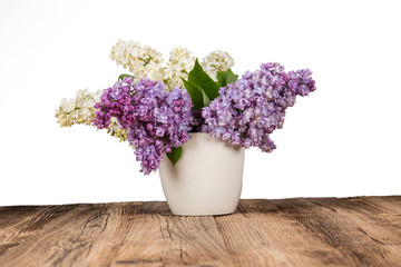 bouquet of lilac flowers in flower pot