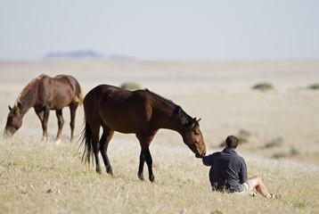 Afrika, Namibia, Tourist und Wildpferde