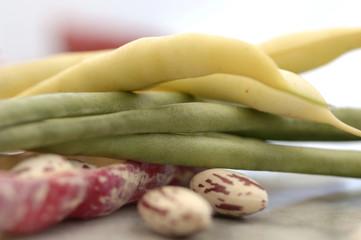 Verschiedene Bohnen und Hülsenfrüchte