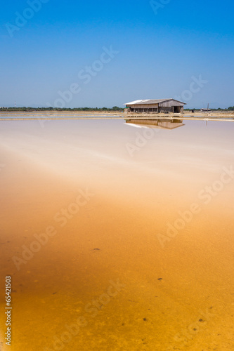 Dunaliella salina in salt evaporation pond and wooden storehouse