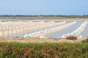 The harvest times of salt in salt evaporation pond