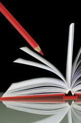 Roter Zeichenstift mit Notebook