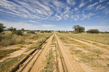 Afrika, Botswana, Weg durch Kalahari-Wüste